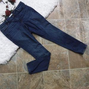 Ann Taylor LOFT Curvy Skinny Jeans Size 10 Dark